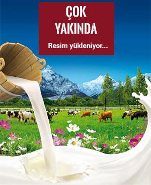 Bayram Köy Tipi Yogurt 2250.gr